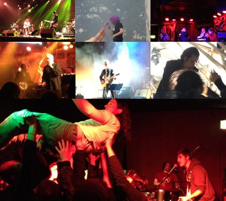 Festival u0026amp; Gigs 2012-13